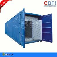 China Refrigeration 20 Ft 40ft Container Cold Room / Freezer Shipping Containers For Fish Meat Storage on sale