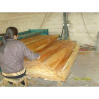 Wholesale Natural Birch Rotary Cut Veneer With 0.2 mm - 0.6 mm Thickness from china suppliers
