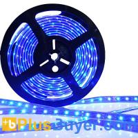 Wholesale Flexible Blue LED Strip - 7 Meters (Water, UV and Dustproof) from china suppliers