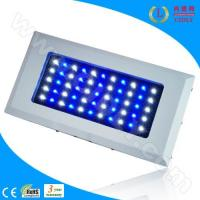 Wholesale 165W (55*3W) LED Aquarium Light With 2 Switches (CDL-A120W) from china suppliers