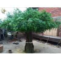 Wholesale UVG glassfiber indoor green fake banyan tree tall silk trees for shopping center decoration GRE054 from china suppliers