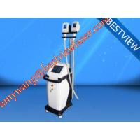 Wholesale HOT!! best selling  plant price Cryolipolysis BM606 fat losing machine from china suppliers