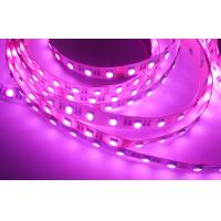 Wholesale Flex LED Strips Type SMD5050 RGBW LED Strip 3M tape for Indoor from china suppliers