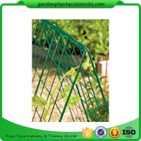 """Wholesale Deluxe Garden Plant Trellis For Cucumbers , Steel Cucumber Garden Trellis Each side is 32"""" W x 48"""" H from china suppliers"""