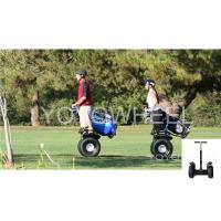 Wholesale Outdoor off road travel Segway Electric Scooter Transporter For wild Park from china suppliers