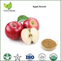 Wholesale apple extract,green apple extract,green apple extract,apple polyphenols extract from china suppliers