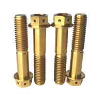 Buy cheap Flange Bolt Screw M10 80l 6al-4v Titanium Grade 5 Hex Torx Hexagon Head Screw Titanium from wholesalers