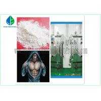 Wholesale Anti Estrogen Steroids Bodybuilding Testosterone Propionate Injection / Oral from china suppliers