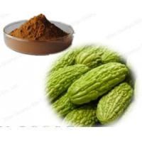 Wholesale High quality Organic Bitter melon powder 10% charantin Bitter melon extract from china suppliers