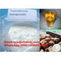 Wholesale Anabolic Steroid Powder Testosterone Isocaproate  ( Test I ) for Muscle Growth , CAS 15262-86-9 from china suppliers