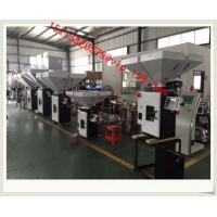 Wholesale China 2-6 ingridents plastic batch gravimetric blender/Digital Gravimetric Blender from china suppliers