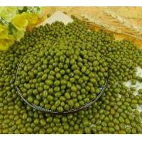 Wholesale high quality new crop bulk green mung beans nice price from china suppliers