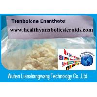 Wholesale USP31 Parabolan 10161-33-8 Trenbolone Enanthate 99% Steroid Raw Powder from china suppliers