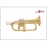 Wholesale Premium case Brass Musical Instruments / Stainless steel Flugel (FG8610G) from china suppliers