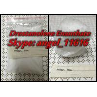Wholesale White Powder Masteron Enan Drostanolone Steroid Drostanolone Enanthate 150MG / ML from china suppliers