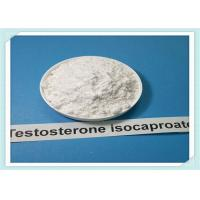 Wholesale HPLC Purity 99% Testosterone Steroid / Test ISO Powder CAS No15262-86-9 from china suppliers