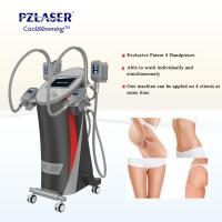 Wholesale CE Cool Tech Cryolipolysis Fat Freeze Slimming Machine For Weight Loss from china suppliers