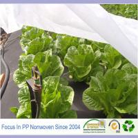 Quality Agriculture spp-nonwoven modern agriculture tools for sale