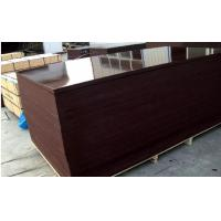 Wholesale Brown Phenolic Film Faced Plywood Board water-proof from china suppliers
