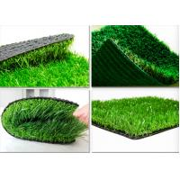 Quality School Outdoor Landscaping Artificial Grass , Spine Shape Yarn Synthetic Grass Lawns Four color for sale