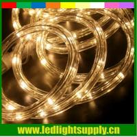 Wholesale Flat rope flex light 1/2'' 2 wire 12/24v building decoration led duralight from china suppliers
