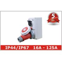 Wholesale Compact Industrial Power Socket 16A for Electrical Power Distribution from china suppliers