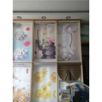 Quality fashion day night zebra roller blind for sale