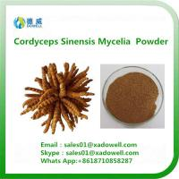 Buy cheap High quality Cordyceps Sinensis Mycelia Powder from wholesalers
