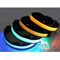 Wholesale Fashionable LED dog collar with big discount from china suppliers