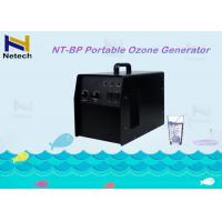 Wholesale CE 3-7g Adjustable 20 - 100% Household Ozone Generator Machine With Timer from china suppliers