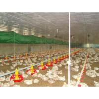 Wholesale poultry stockline from china suppliers