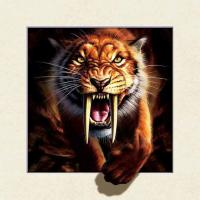 Wholesale Strong 5d Deep Effect Lenticular Photo Printing 40x40cm Picture Tiger / Wolf from china suppliers