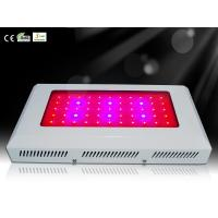 Wholesale 55*3W Chipled Aquarium Lights for Reef and Marine Fish Growth from china suppliers