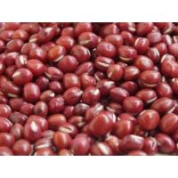 Wholesale manufacturer Red adzuki bean extract, Red Bean Extract 10:1 TLC, Red Bean Powder, Chinese manufacturer from china suppliers
