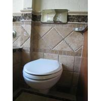 Wholesale White Ceramic Finish Stylish Space Saving Design with a Modern Look inc. Soft Close Seat Wall-Hung WC Pan With Toilet Seat from china suppliers