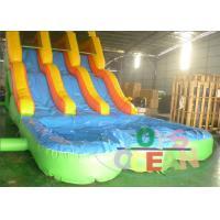 Wholesale New Design Double Side Water Slide With Double Slide For Kids And Adults from china suppliers