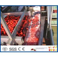 Wholesale Full / Semi Automatic Tomato Processing Equipment For Tomato Processing Plant from china suppliers