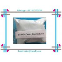 Wholesale Nandrolone Steroid  Propionate Nandrolone 17-propionate for Effective Bodybuilding CAS 7207-9 2-3 from china suppliers