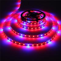 Wholesale DC12V 12W/M Cuttable LED Grow strip Blue+Red flexible LED grow light from china suppliers