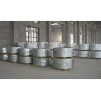 Wholesale Roof Panel Hot Dipped Galvanized Steel Strip , Zinc Coated Steel Strip Coil from china suppliers