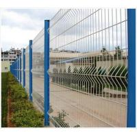 Quality Manufacture All Kinds of Fence Mesh for sale
