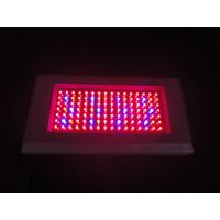 Wholesale Full spectrum hydroponics 300w led grow light grow high efficient AC 85 ~ 265V from china suppliers