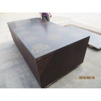 Wholesale CROWN BRAND FILM FACED PLYWOOD, COMBI CORE, WBP GLUE。good quality low price CROWN  brand film faced plywood from china suppliers