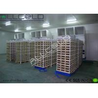 Wholesale Bitzer / Copeland Compressor Forced Air Cooling System Modular Construction from china suppliers