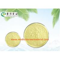 China Natural Sophora Japonica Extract , Pure Plant Extracts 95% Quercetin Antioxidant on sale
