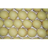 Wholesale Health Benifit Fresh Snow Pears Contaning Vitamins B1 , Carotene from china suppliers