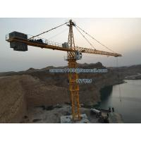 Wholesale 70M Arm Booom 20tons Load TC7050 Hammerhead Crane Tower 5m Mast Section from china suppliers