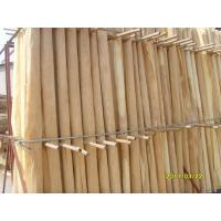 Wholesale A Grade Birch Rotary Cut Veneer With Thickness 0.2mm - 0.6mm from china suppliers