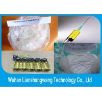 Wholesale Drostanolone Propionate CAS 521-12-0 Masteron , Fat Loss Drug for Bodybuilding from china suppliers