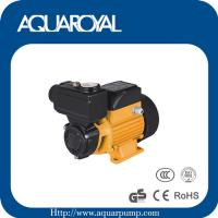 Wholesale Vortex pump,Peripheral pump,Surface pump TPS60/70/80 from china suppliers